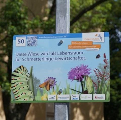 Insektenwiese_Schild