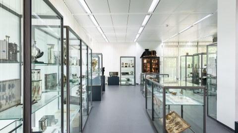 Foto der Dauerausstellung in der Kustodie mit großen Glasvitrine, in denen verschiedene Ausstellungsstücke sind