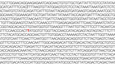 Teil des Coronavirus-Genoms mit einer rot markierten N501Y-Mutation. Eine N501Y-Mutation führte zur Entstehung neuer Varianten des Coronavirus.