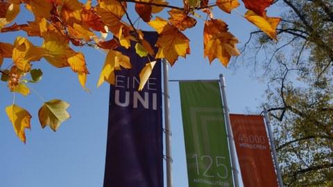 """Das Foto zeigt drei unterschiedlich farbige Fahnen auf dem Campus der TU Dresden. Sie haben die Aufschriften: """"Eine Uni"""", """"125 Nationalitäten"""", """"45000 Menschen"""". Die Blätter des Baumes im Vordergrund sind rot und gelb gefärbt."""
