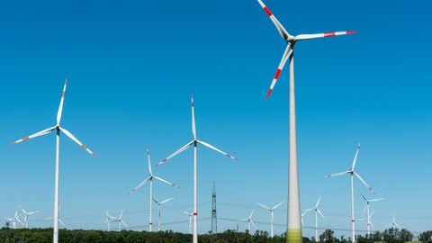 Windräder stehen auf einer grünen Wiese vor blauem Himmel.