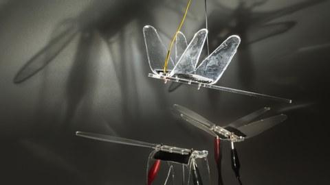 Bionische Libellen