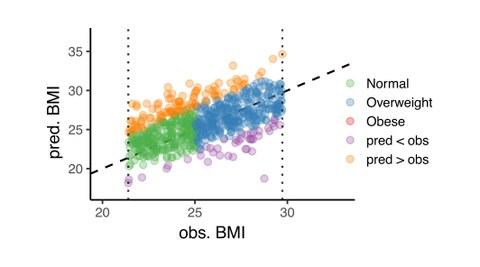 BMI Bestimmung eng