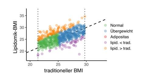BMI Bestimmung