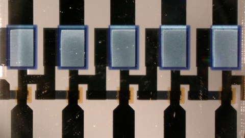 Bild eines 5-stufigen komplementären Ringoszillators, der aus organischen permeablen Basistransistoren besteht.