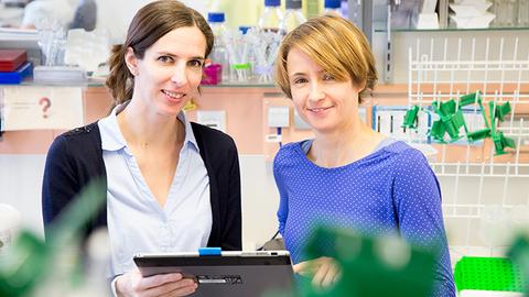 Prof. Dr. Martina Rauner und Dr. Ulrike Baschant
