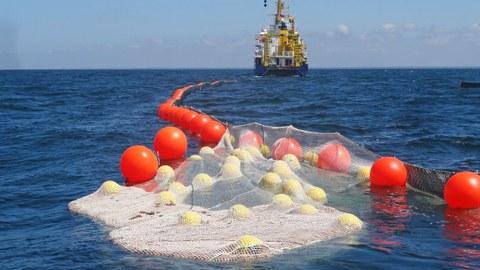 Ökologische Ölbinder