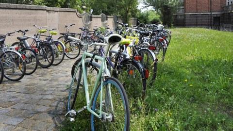 Bild mit Fahrrädern auf dem Campus