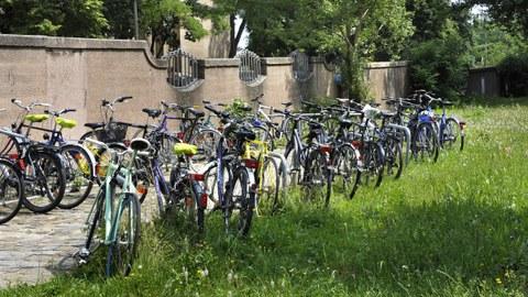 Zwischen einer Mauer und einer Wiese verläuft von links unten nach rechts oben ein gepflasterter Weg, auf dem beidseitig viele Fahrräder angeschlossen sind.