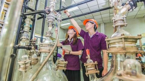 Eine Frau und ein Mann in violetten Hemden und orangefarbenen Helmen stehen inmitten einer raumfüllenden Apperatur aus Leitungen und Glasbehältern
