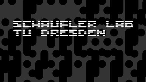 Logo des Schaufler Lab, geschrieben in großen weißen Punkten auf schwarzem Grund