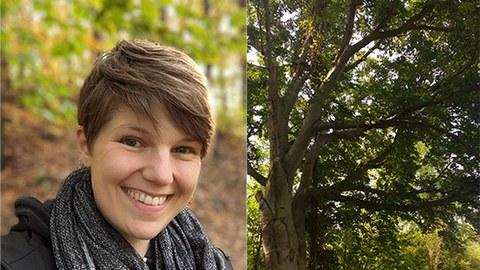Fotocollage: rechts Wald, links das Porträtfoto von Solveig Nitzke
