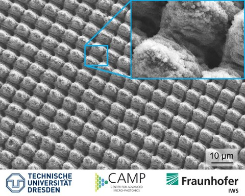 Mikroskopaufnahme einer großflächigen, zwei- und dreistufigen multi-skaligen Struktur mit multifunktionalen Oberflächeneigenschaften