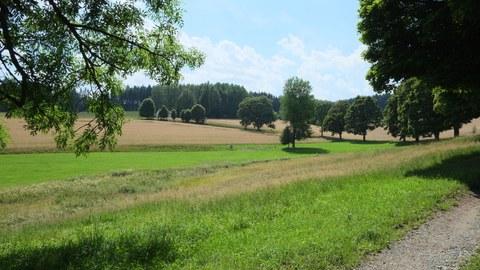 Vogtland Bad Brambach