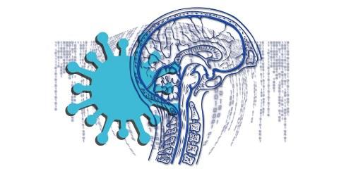 Grafik-Collage aus einem gezeichneten Querschnitt durch einen menschlichen Kopf und einem übergroßen Corona-Virus