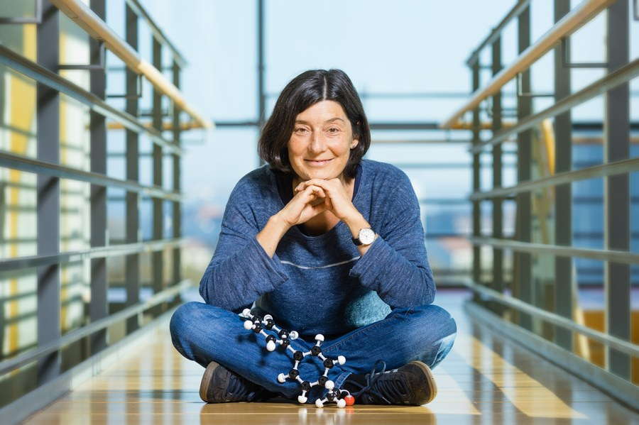 Dresden single molecule