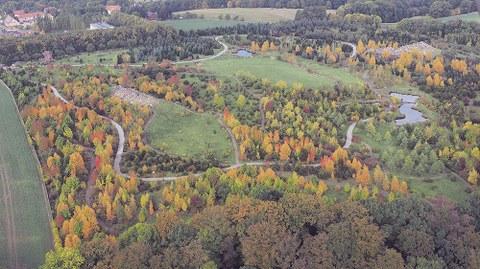 Das Nordamerika-Quartier im Forstbotanischen Garten soll auch für Sehbehinderte erlebbar werden.