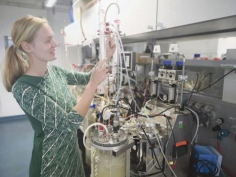 Forscherin Julia Emmermacher überprüft im Institut für Naturstofftechnik der TU Dresden einen Bioreaktor, in dem sie die Ausgangsstoffe für innovative naturnahe Holzschutzmittel züchtet.