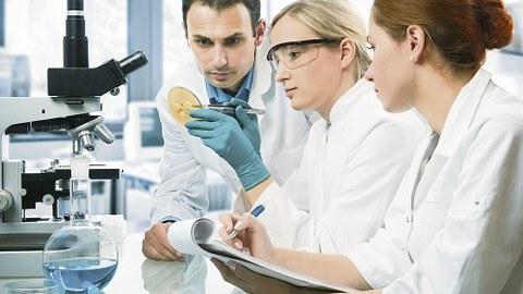 Zwei weibliche, ein männlicher Wissenschaftler, an einem Labortisch sitzend, betrachten ein Objekt.
