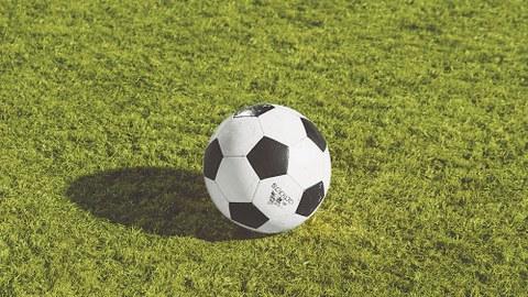 Ein Fußball liegt auf einer grünen Wiese.