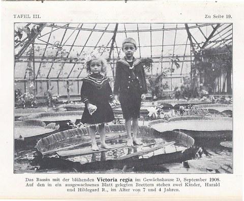 Gartenführer 1910.jpg