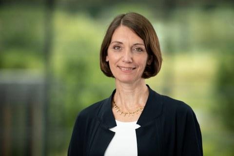 Portrait Prof. Böhm