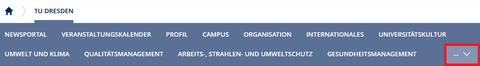 Der Screenshot zeigt einen Ausschnitt der Internetseite der TU Dresden. Es sind die einzelnen Themen unter dem Reiter TU Dresden abgebildet. Diese heißen: Newsportal, Veranstaltungskalender, Profil, Campus, Organisation, Internationales, Universitätskultur, Umwelt und Klima, Qualitätsmanagement, Arbeits-, Strahlen- und Umweltschutz und Gesundheitsmanagement. Rechts neben den Themen ist ein Pfeil mit 3 Punkten, auf den man klicken kann. Der Pfeil ist rot umrandet.