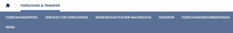 Der Screenshot zeigt einen Ausschnitt der Internetseite der TU Dresden. Es sind die einzelnen Themen unter dem Reiter Forschung und Transfer abgebildet. Diese heißen: Forschungsprofil, Services für Forschende, Wissenschaftlicher Nachwuchs, Transfer, Forschungsinformationen und News.