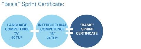 Komponenten der Sprint-Zertifikate