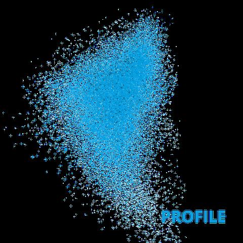 Blaue Punkte, die sich zu einem Schwarm zusammenfügen. Der Hintergrund ist weiss. In blauer Schrift steht das Wort Profile neben dem Schwarm.