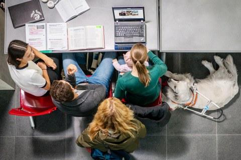 Foto von vier Studierenden an einem Tisch aus der Vogelperspektive. Auf dem Tisch liegen Fachbücher, ein zugeklappter Notebook und ein Notebook mit Braillezeile.Auf dem Schoss einer Studentin sitzt ein Baby, rechts daneben liegt ein Golden Retriever auf dem Boden, der das Führungsgeschirr eines Blindenhundes trägt.