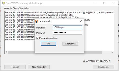 OpenVPN Eingaben Windows