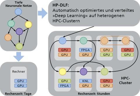 HPDLF Schema