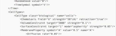 Ausschnitt aus einer deklarativen xml-Beschreibung eines multizellulären Modells