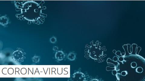 """Illustration mehrerer Viren vor blauem Hintergrund. In der linken unteren Ecke befindet sich ein Textfeld mit der Aufschrift: """"Corona-Virus"""""""