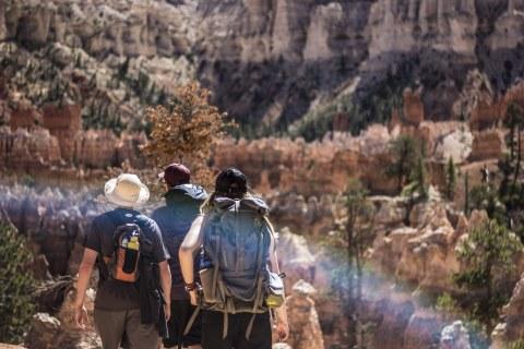 Bild von 3 Personen, die in einem Nationalpark wandern