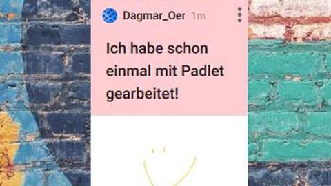 Der Screenshot zeigt ein Padlet - als Beispiel für digitale Pinnwände